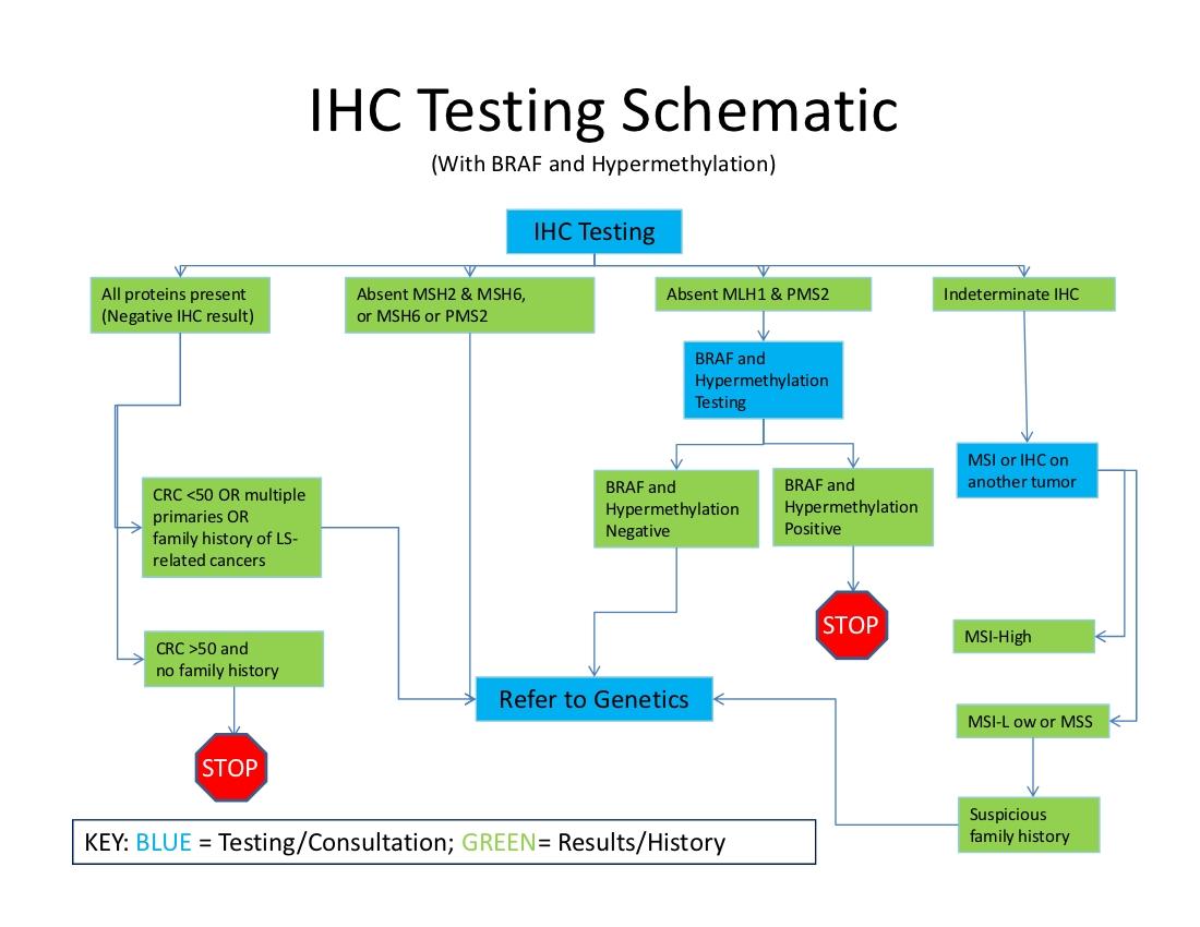 Immunohistochemistry (IHC) -